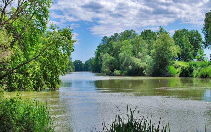 Επερώτηση για τη ρύπανση του Πηνειού ποταμού