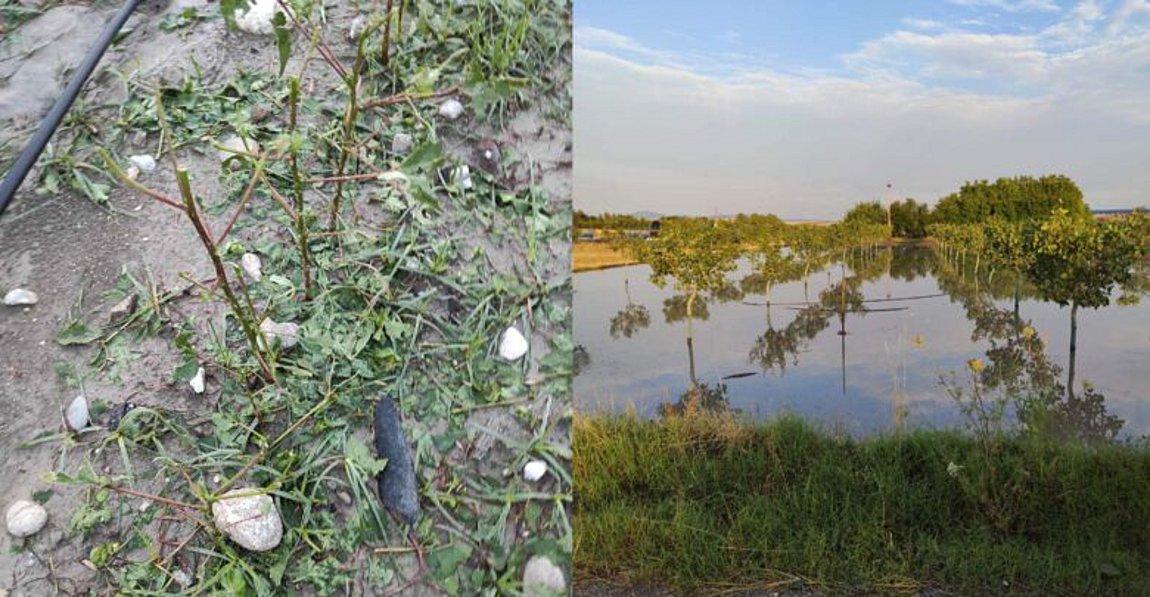 Λάρισα: Τεράστια καταστροφή από συνεχόμενες χαλαζοπτώσεις στον Κραννώνα