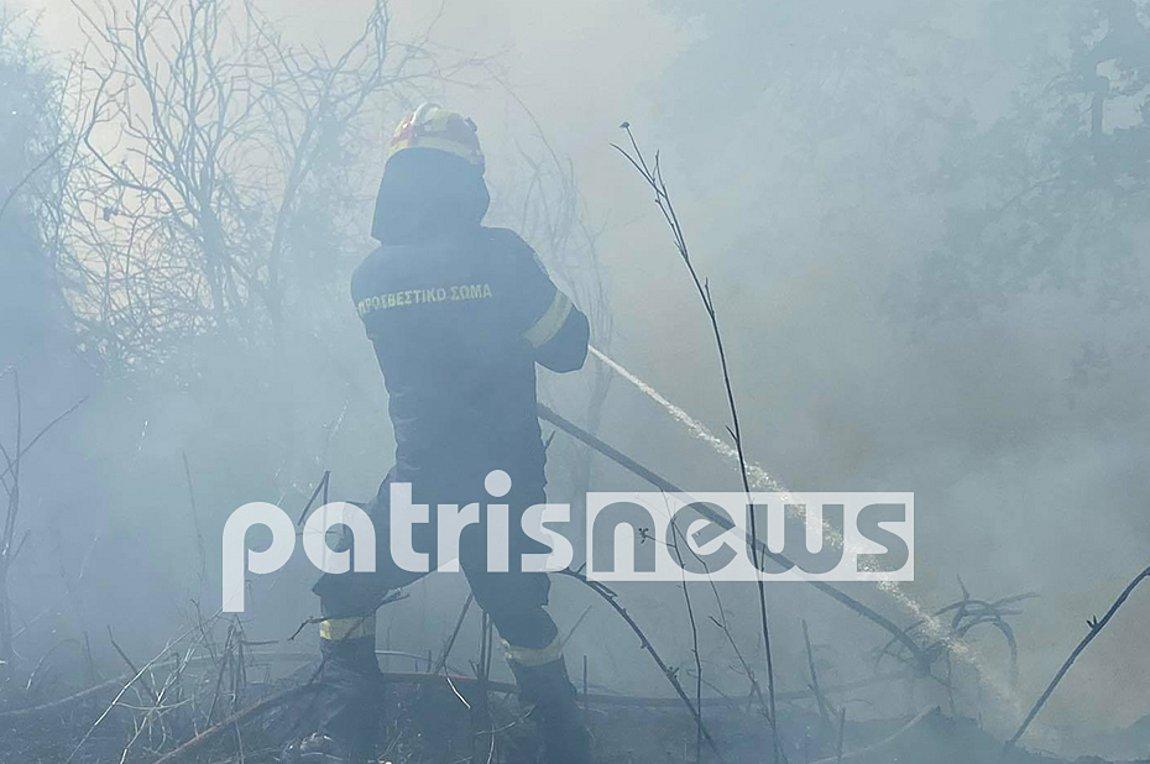 Μάχη με τις φλόγες σε Ηλεία και Κορινθία - Τι λέει ο εκπρόσωπος της Πυροσβεστικής