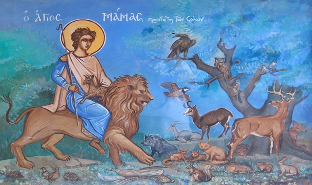 Κάλεσμα στους κτηνοτρόφους της περιοχής για την εορτή του Αγίου Μάμα στη Διάβα