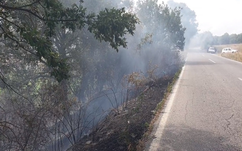 Φωτιά στον δρόμο προς ΄Αγιο Δημήτριο - Κάηκε μικρή έκταση πλησίον του οδοστρώματος