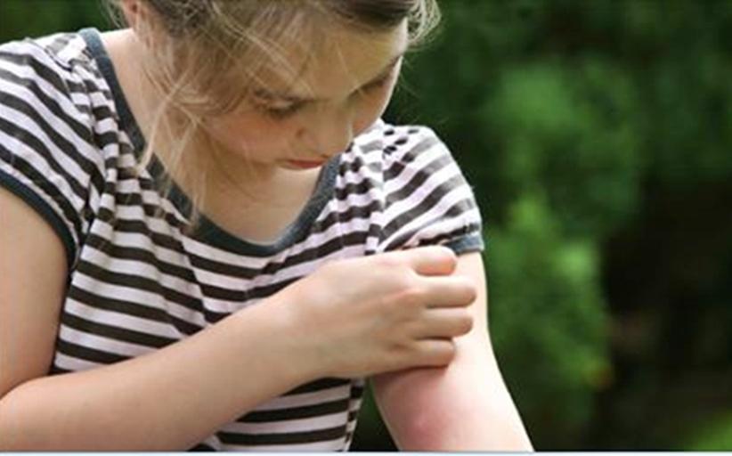 Δυσαρέσκεια και διαμαρτυρίες για κουνούπια και ψύλλους σε παιδικές χαρές