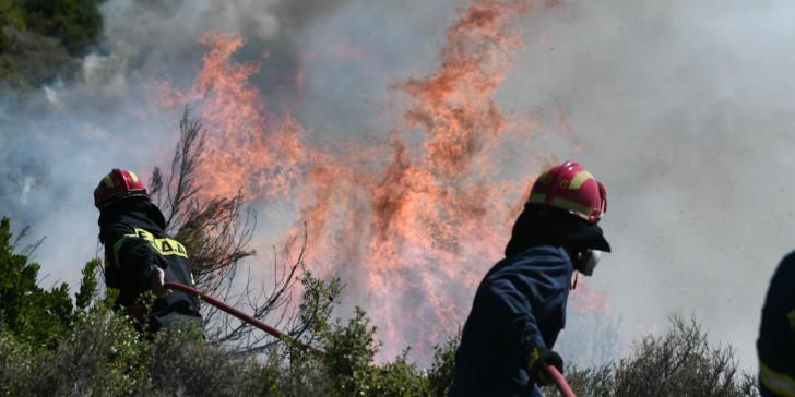 Φωτιά στον Διόνυσο και στον Νέο Βουτζά - Διακοπές ρεύματος στη Νέα Μάκρη