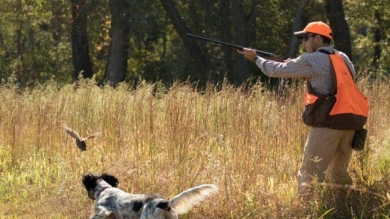 Εκ νέου - με πρόταση - ο Θανάσης Λιούτας στον Υφυπουργό Πολιτικής Προστασίας, Νίκο Χαρδαλιά για τους Κυνηγούς
