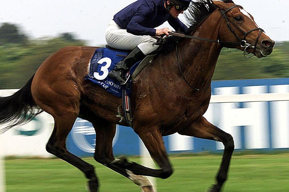 Το άλογο που αξίζει παραπάνω από Μέσι και Ρονάλντο μαζί