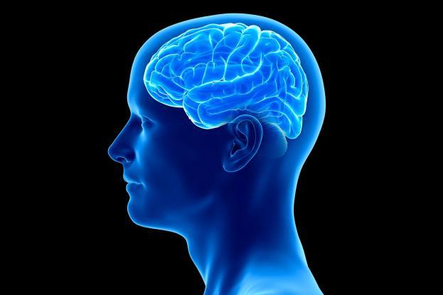 Ανθρώπινος εγκέφαλος: Έκπληξη με το σε ποια ηλικία αρχίζει η γήρανση