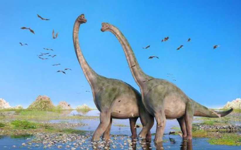 Ανακαλύφθηκε ίσως το μεγαλύτερο γνωστό πλάσμα που βάδισε ποτέ στη Γη