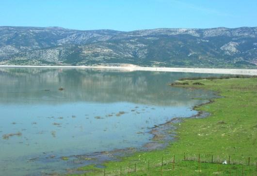 Παραχώρηση χρήσης αγροτεμαχίων στις εκτάσεις της πρώην λίμνης Κάρλας, με χαμηλό τίμημα
