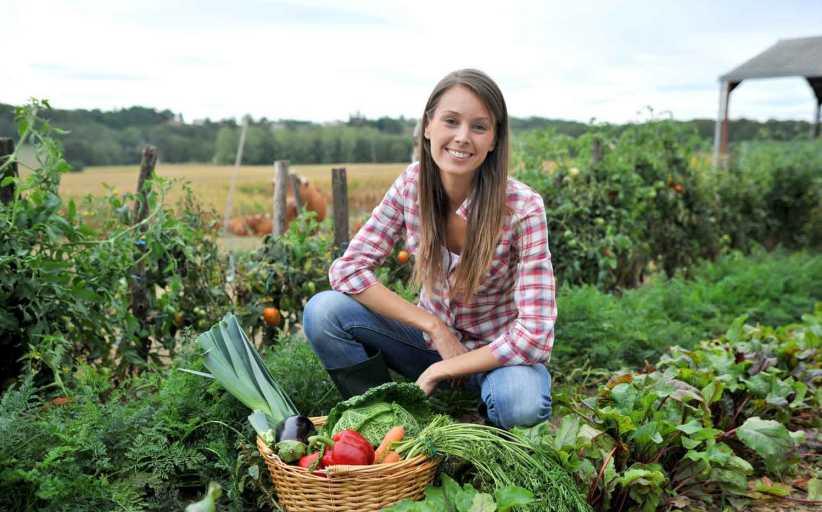 Προδημοσίευση 3ης πρόσκλησης Εγκατάσταση Νέων Αγροτών