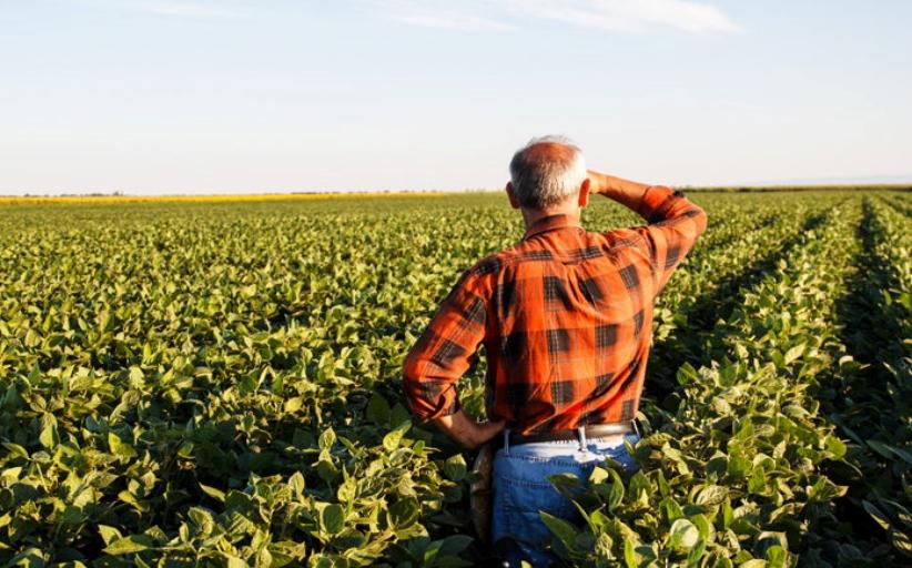 ΄Αμεση στήριξη αγροτών, επιχειρήσεων και εργαζομένων στον αγροδιατροφικό τομέα