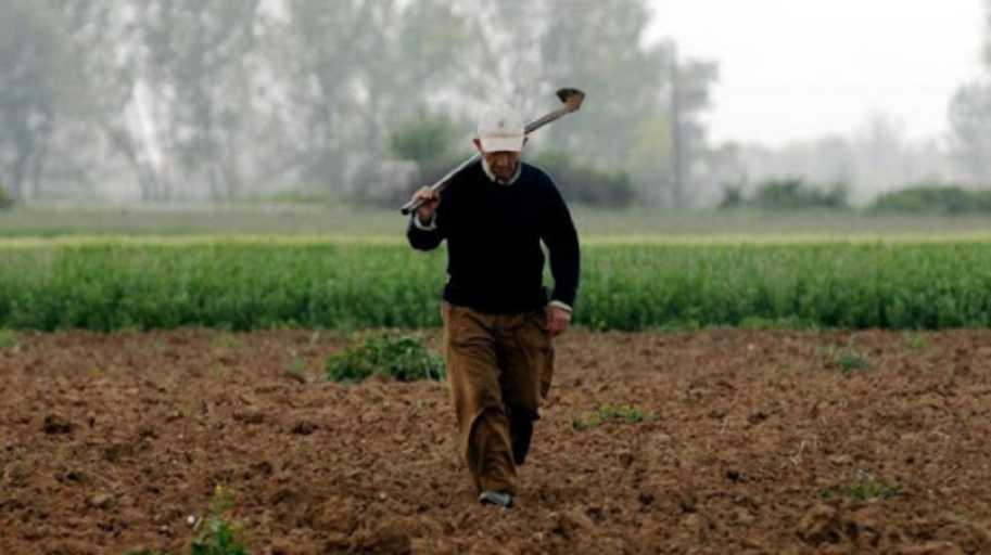 ΚΚΕ: Ζημιές στις καλλιέργειες από τους συνεχιζόμενους παγετούς στον Ν. Τρικάλων