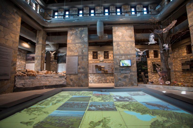 Ο Περιφερειάρχης Θεσσαλίας Κώστας Αγοραστός  για την Παγκόσμια Ημέρα Πολιτισμού