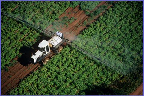 Ενημέρωση για την σωστή εφαρμογή των φυτοπροστατευτικών προϊόντων