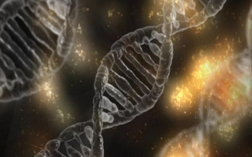 Σπουδαία ανακάλυψη: Ολοκληρώθηκε η ανάγνωση του ανθρώπινου γονιδιώματος