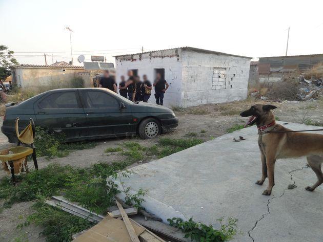 Αστυνομικός πυροβόλησε σκύλο που τον δάγκωσε στο πόδι