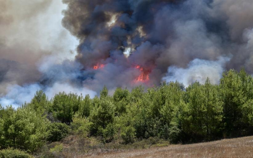 Απαγόρευση εισόδου σε δάση και εκτέλεσης επικίνδυνων για φωτιά εργασιών έως τις 9 Αυγούστου