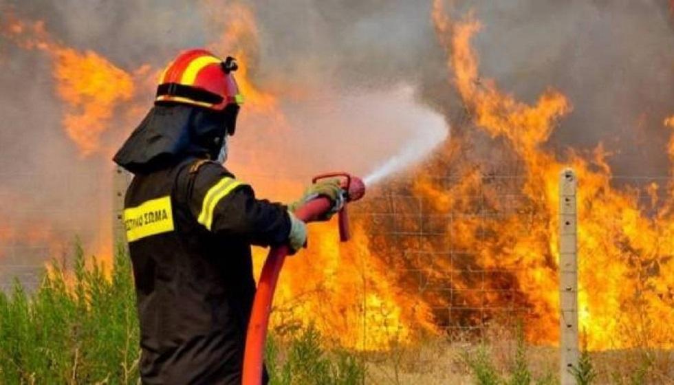ΠΕ Θεσσαλίας: Αποφυγή εργασιών και ενεργειών που μπορεί να προκαλέσουν πυρκαγιά από αμέλεια- Αυξημένη επιφυλακή