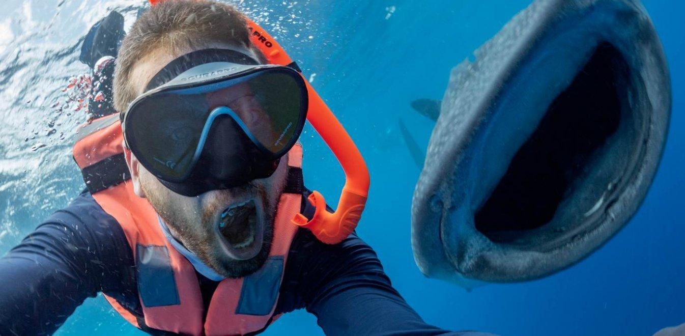 Δύτης έβγαλε την τέλεια selfie - Πόζαρε με φαλαινοκαρχαρία