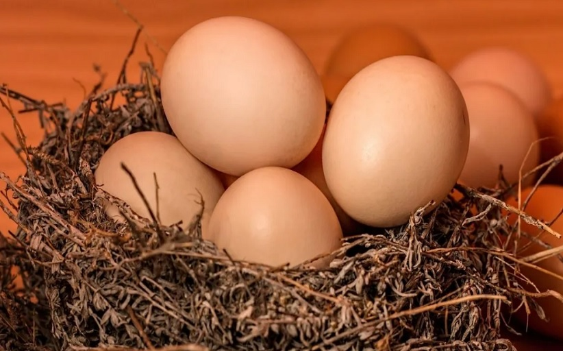 Αυγά: Πλούσια σε θρεπτικά συστατικά