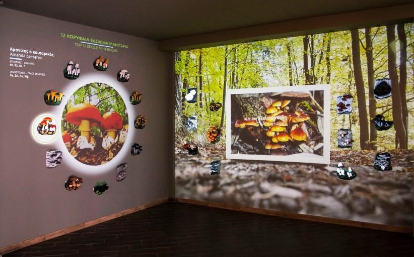 Παρουσίαση της νέας πτέρυγας του Μουσείου Μανιταριών